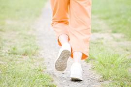 健康を維持するために、正しい生活習慣と歩行のすすめ